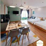 Homestay-Quy-Nhơn-giá-rẻ-TMS-Pullman-can-1pn-city-view-10201